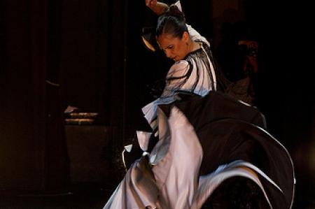 Biennale de Flamenco 2014 602