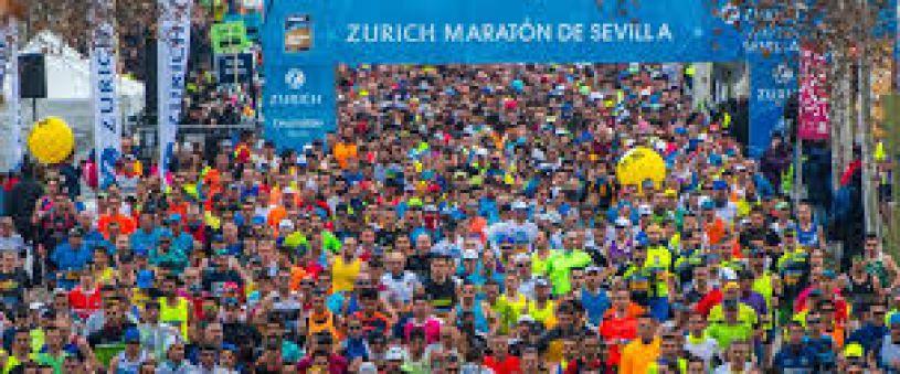Seville Marathon 2019
