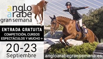 Große Woche des Anglo-Arabischen Pferdes von Sevilla