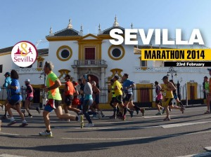 Marathon of Seville 2014